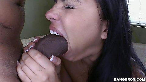 David allan coe pick em lick em stick em